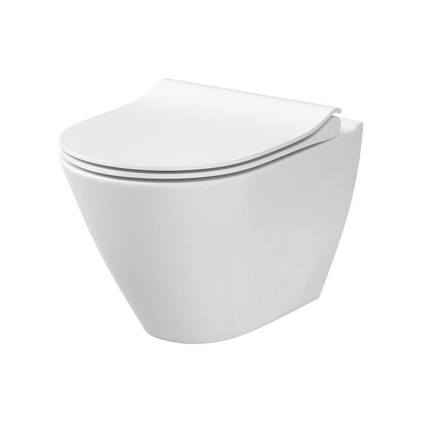 WC Wand-Tiefspül-WC Danpasar spülrandlos Absenkautomatik